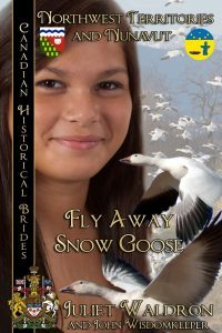 Fly Away Snow Goose by Juliet Waldron and John Wisdomkeeper